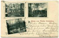 Thiede1901
